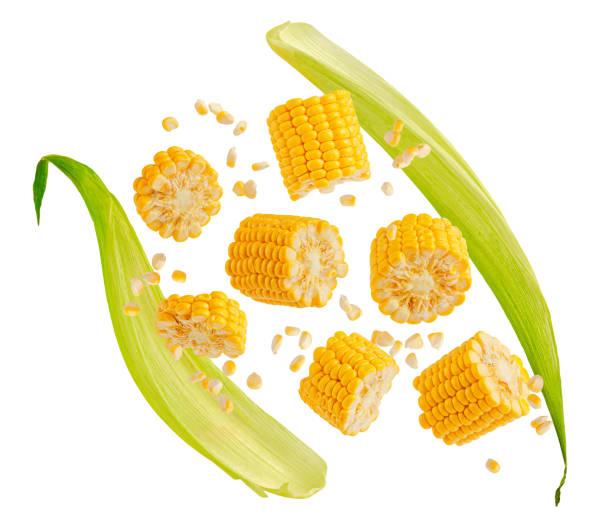 Corn Treats - Healthy Food for Guinea Pigs